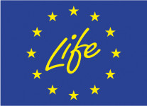 life_official_logo[1]