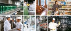industria agroalimetare