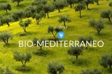 Alla Sicilia spetta il compito di coordinare il cluster biomediterraneo.