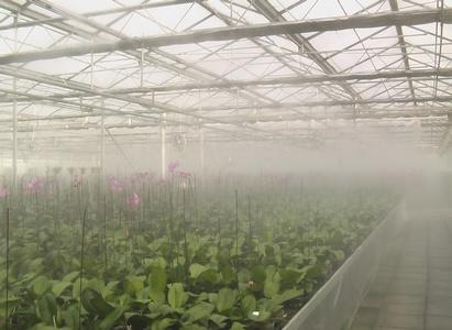 Sistema Fogging ad alta pressione
