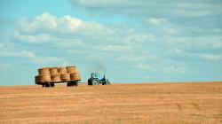 ministero agricoltura emendamenti finanziaria