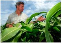Gli obiettivi principali della politica agricola comune sono: migliorare la produttività agricola, affinché i consumatori possano contare su approvvigionamenti stabili di alimenti a prezzi accessibili, e garantire un tenore di vita decoroso agli agricoltori europei.