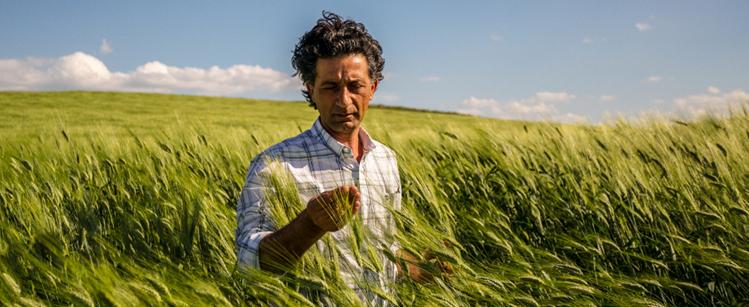 come-diventare-un-imprenditore-agricolo-professionale-o-un-iap