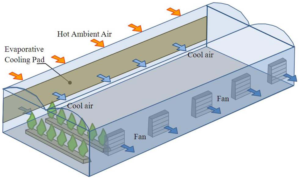 Sistema raffreddamento serra per climi mediterranei
