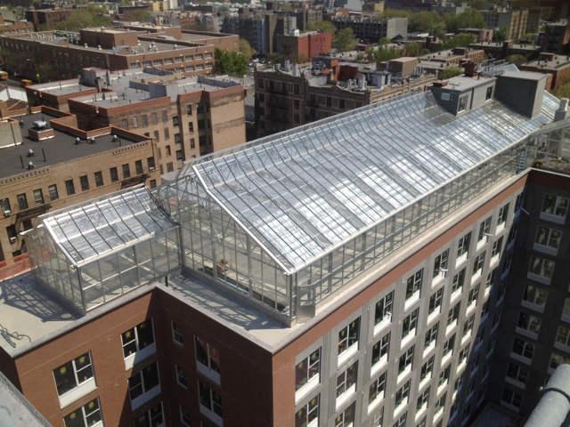 vertical farm serra sui tetti