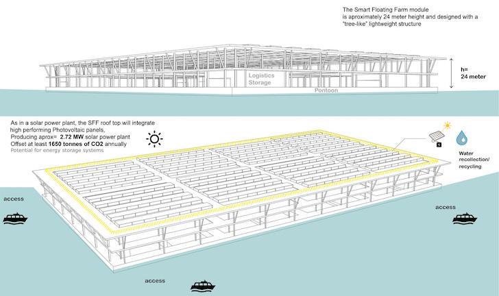 fattoria gallegiante2