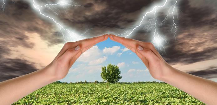 IST gestione rischio agricoltura