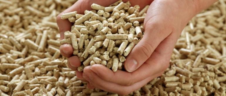 Progetti integrati per la produzione in Pellet. Scrivi ad agricolturafinanziamenti@gmail.com