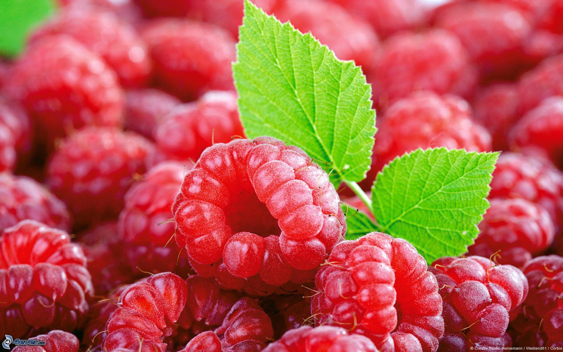 Tisana-di-Lampone-Frutti-Dolcificati[1]