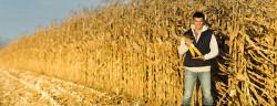 società imprenditore agricolo professionale