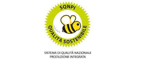 Logo Certificazione integrata