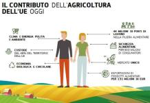 contributo agricoltura europea