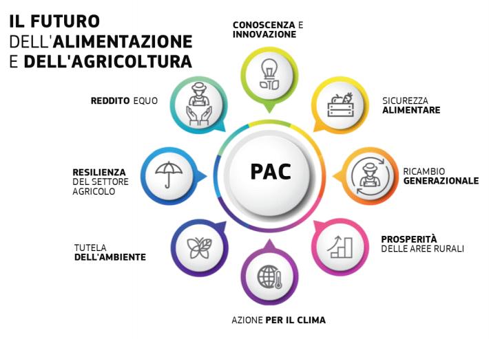futuro alimentazione e agricoltura
