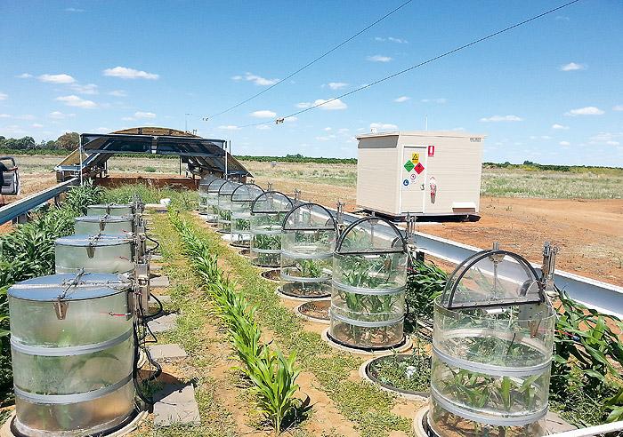 innovazione agricoltura precisione