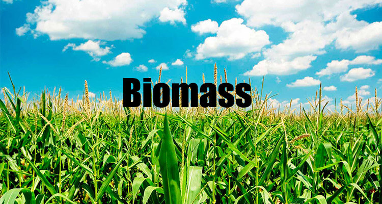 Cogenerazione a biomassa in container