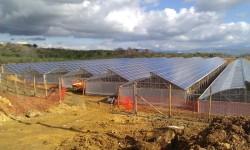 Sostenibilità aziende agricole ed agroalimentare