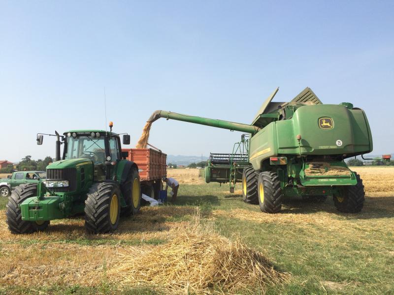 Esempio Protocollo aziendale Anti Covid 19 aziende agricole