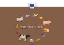 Farm to Fork dal campo alla tavola