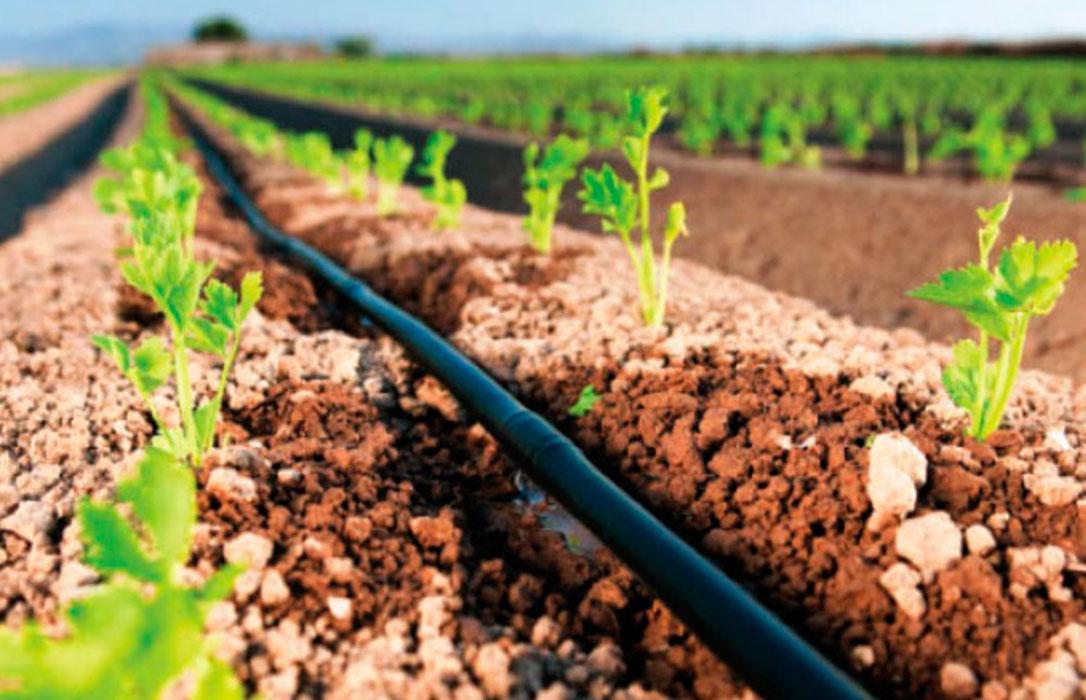 Contaminazione delle acque di irrigazione con cloro