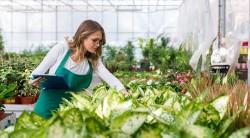 Sostegno finanziario settore Agricolo