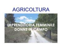 Imprenditoria-femminile-agricoltura-donne-in-campo