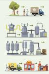 filiera olio di oliva